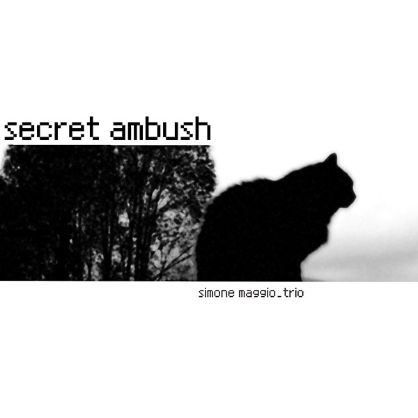 secret-ambush